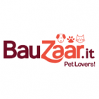 Bauzaar IT coupon codes
