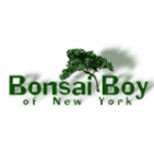 Bonsai Boy of New York Coupon Codes